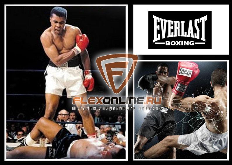 Everlast (США)