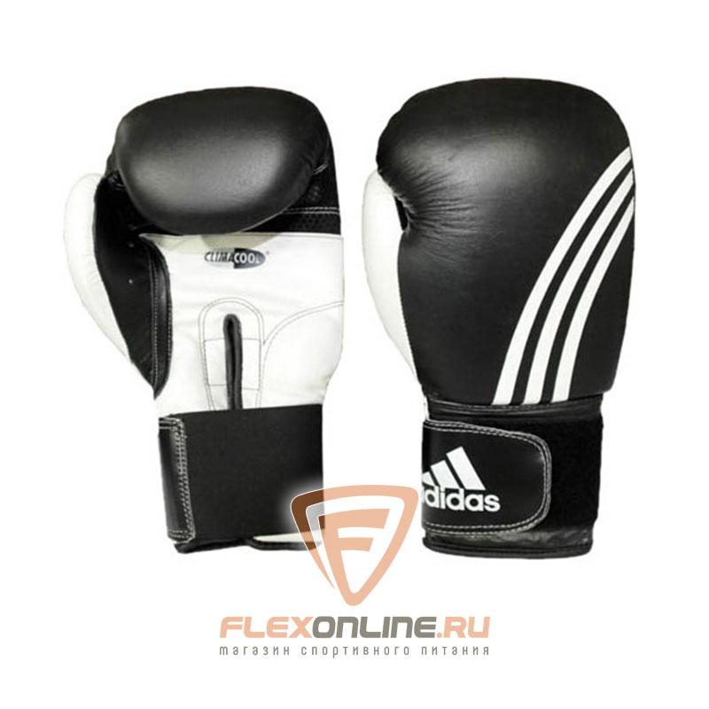 Боксерские перчатки Перчатки боксерские Performer 14 унций от Adidas