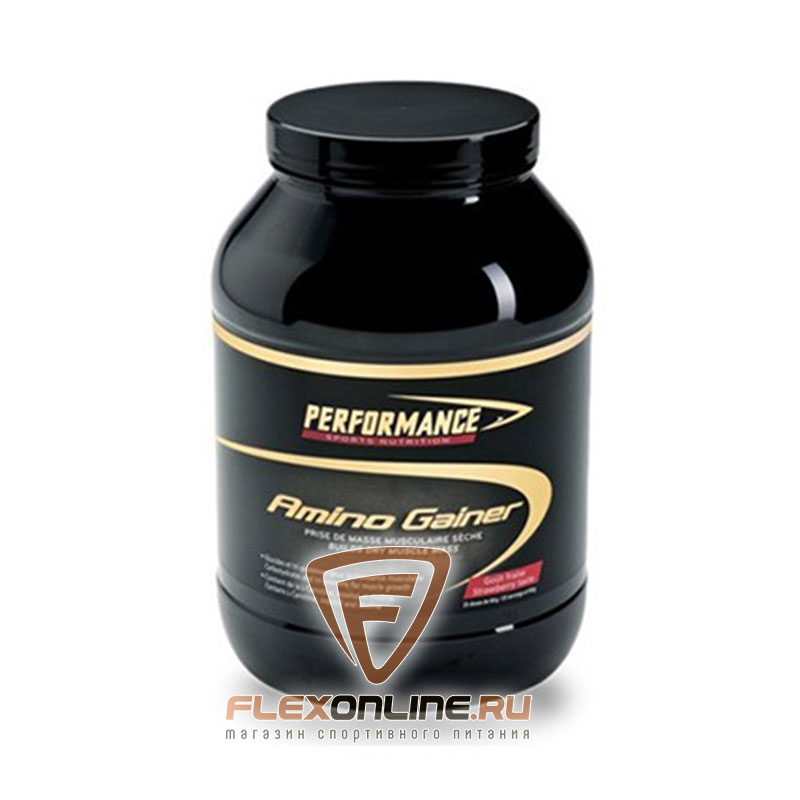 Performance Amino Gainer