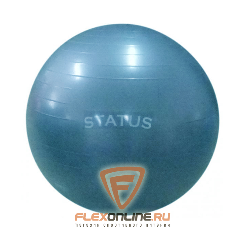 Медицинболы и мячи Мяч гимнастический голубой 75 см с насосом от Status