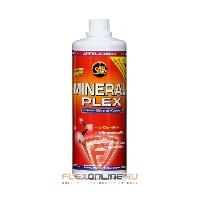 Витамины Mineral Plex + L-Carnitine от All Stars