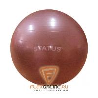 Медицинболы и мячи Мяч гимнастический красный 65 см с насосом от Status